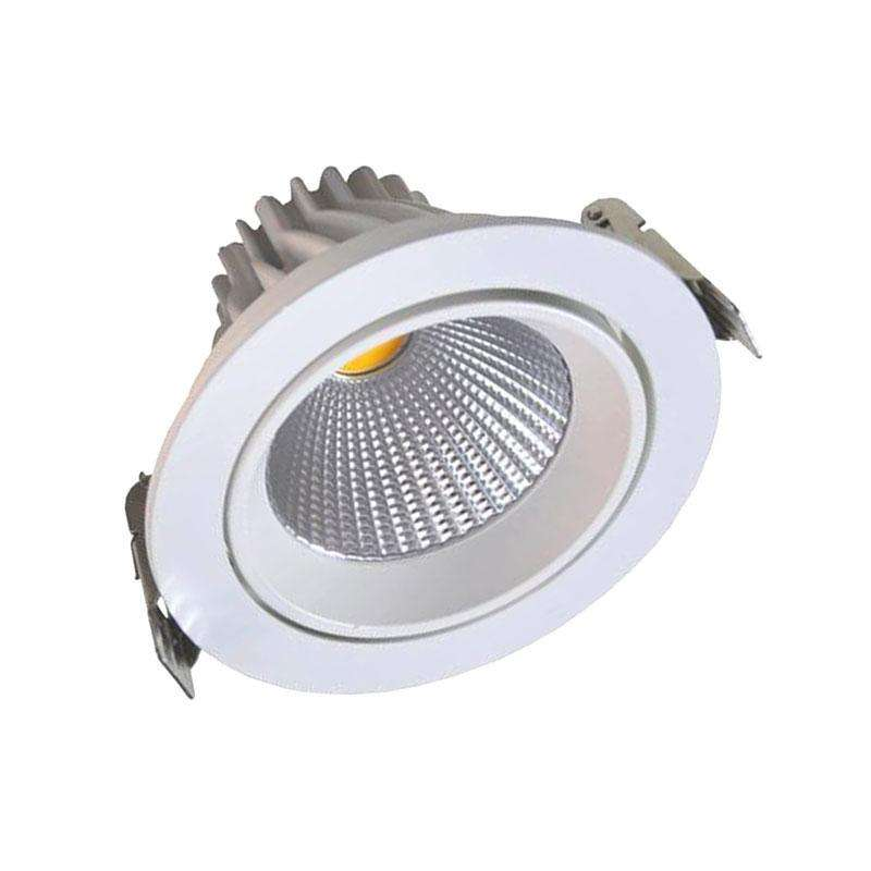 Round COB basculant 12W, Blanc froid